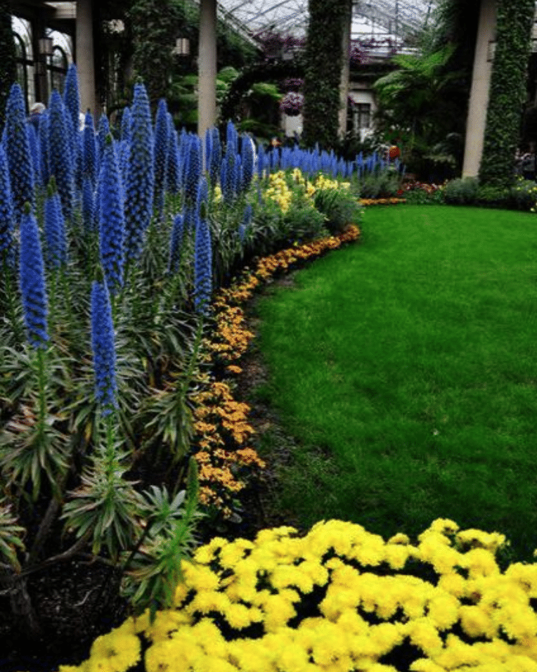 Bored With Traditional Landscaping? See Exciting Non-traditional Landscaping